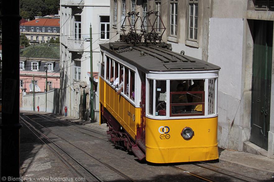 Un tram, molto particolare, mentre affronta un pendio molto scosceso che porta al Bairro Alto.