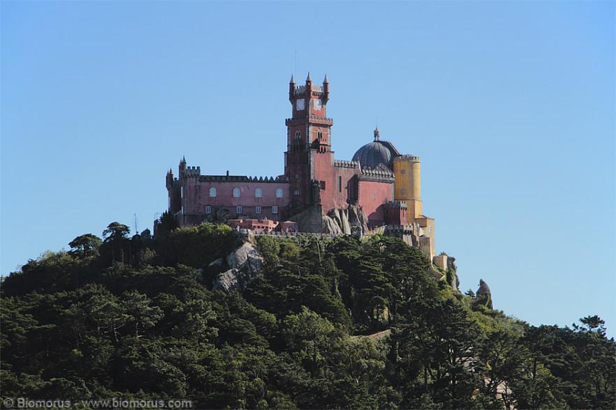 Il Palácio Nacional da Pena - o semplicemente Palácio da Pena o Castelo da Pena - è un palazzo/castello, situato sulle colline della città portoghese di Sintra (nel sud del Paese), fatto costruire dopo il 1840 da Maria II di Braganza (1819 –1853), come regalo di nozze per il marito, re Ferdinando II del Portogallo. Il palazzo è sotto la tutela dell'UNESCO, da cui è stato inserito nel Patrimonio dell'Umanità (come tutto il centro storico di Sintra) nel 1995, e il 7 luglio 2007 è stato eletto una delle 7 meraviglie del Portogallo (fonte: Wikipedia).