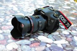 Canon 24-105 su 7D: perché?