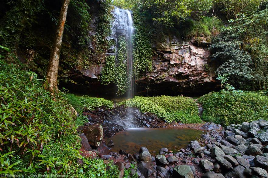 Foto 16 - Crystal Shower Falls (Dorrigo National Park, NSW, Australia) - (Dati di scatto: Canon EOS 7D, Sigma 8-16 f/4.5/5.6 DC HSM, 5 sec, f/22, ISO 100, treppiede)