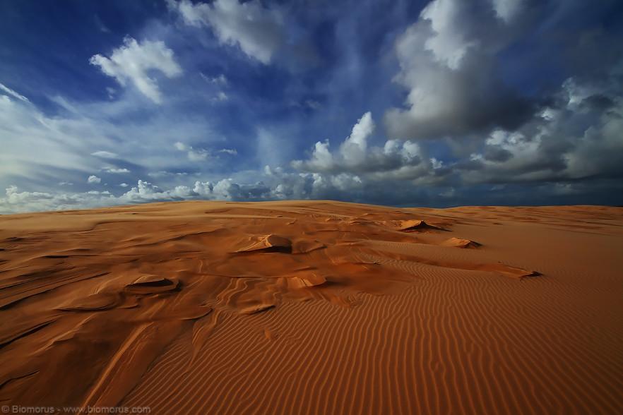Foto 28 - Le sculture disegnate dal vento sulla sabbia del Golden Bight (Anna Bay, NSW, Australia) - (Dati di scatto: Canon EOS 7D, Sigma 8-16 f/4.5/5.6 DC HSM, 1/400 sec, f/11, ISO 100, mano libera)