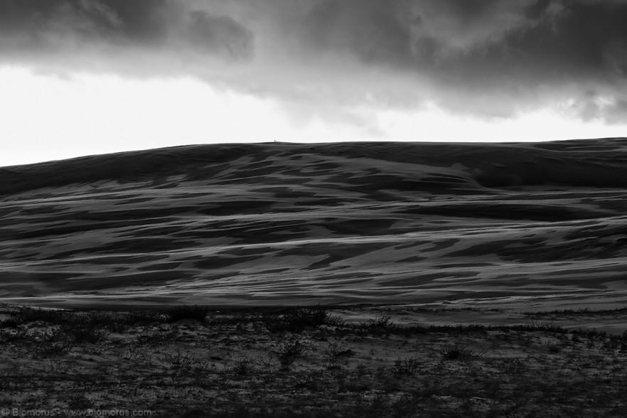 Foto 29 - Dune accarezzate dal vento in bianco e nero (Golden Bight, Anna Bay, NSW, Australia) – (Dati di scatto: Canon EOS 7D, Canon 24-105 f/4 L IS USM, 1/100 sec, f/9, ISO 100, mano libera)
