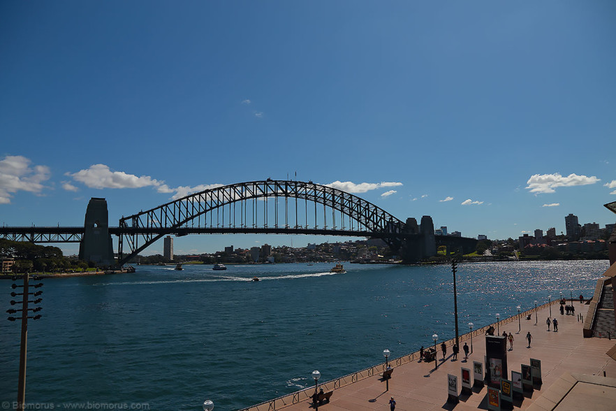 Harbour Bridge – (Dati di scatto: Canon EOS 6D, Canon 24-105 f/4 L IS USM, 1/1000 sec, f/8, ISO 100, mano libera).