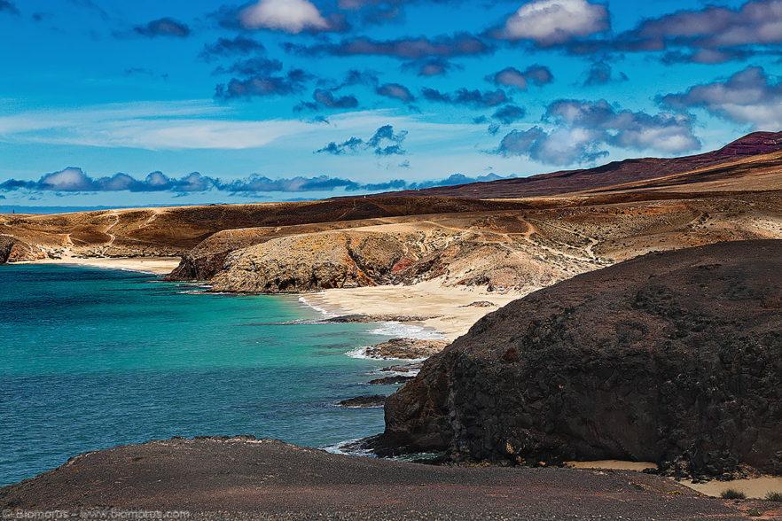 Rinascita (Parco nazionale di Timanfaya, Lanzarote, Isole Canarie, Spagna) – (Dati di scatto: Canon EOS 6D, Canon 24-105 f/4 L IS USM, 1/60 sec, f/4.0, ISO 100, mano libera dal bus…).