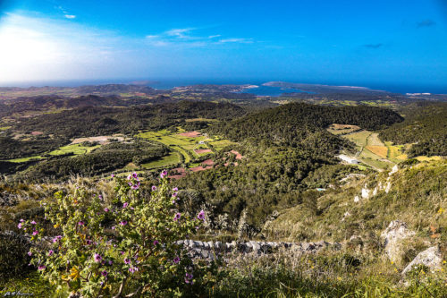 Minorca: un'oasi verde nel Mediterraneo